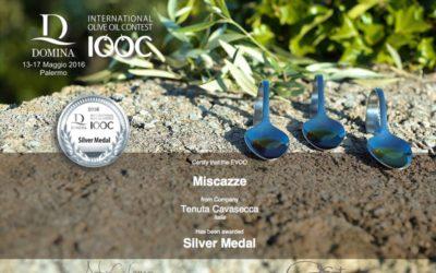 Miscazzè vincitore della Silver Medal al concorso Domina