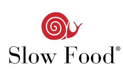 Slow Food Italia: Cavasecca nuovamente nella selezione dei migliori Extravergini.